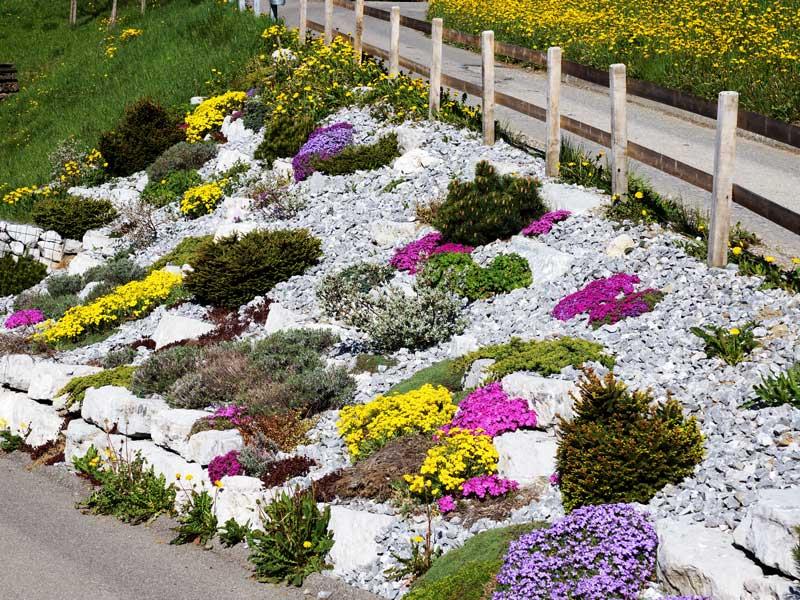 Steingärten Kurt Eschler Gartenbau Ag
